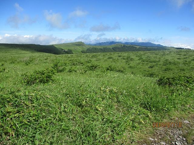 画像6: 【山旅会】霧ヶ峰・男女倉山の下見にいってまいりました!
