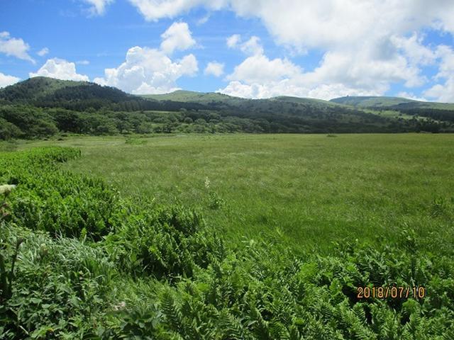 画像12: 【山旅会】霧ヶ峰・男女倉山の下見にいってまいりました!