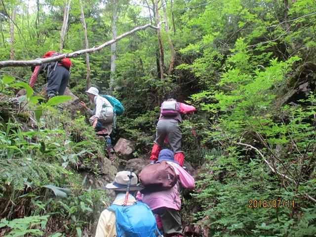 画像6: 【山旅会】志賀山と裏志賀山にいってまいりました!