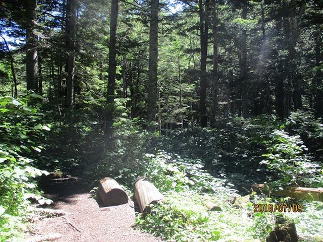 画像6: 【山旅会】蝶ヶ岳ツアーの下見にいってまいりました!