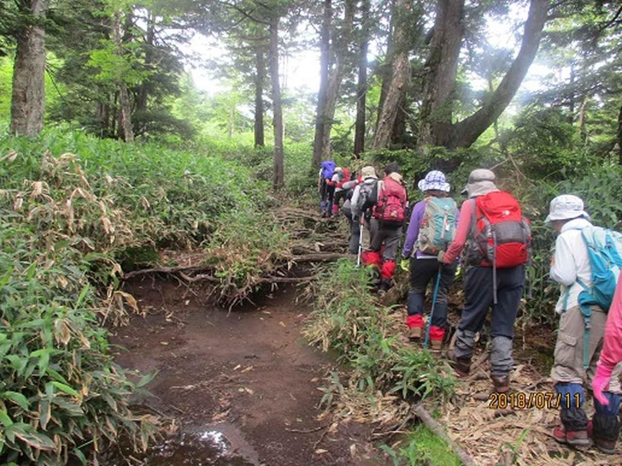 画像5: 【山旅会】志賀山と裏志賀山にいってまいりました!