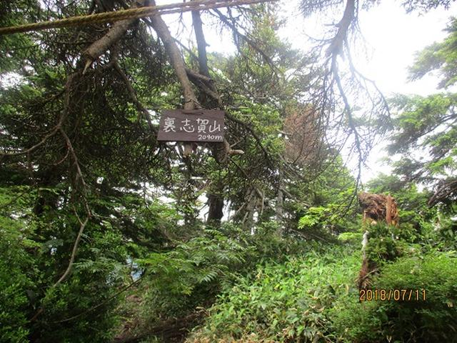 画像11: 【山旅会】志賀山と裏志賀山にいってまいりました!