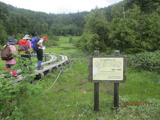 画像12: 【山旅会】志賀山と裏志賀山にいってまいりました!