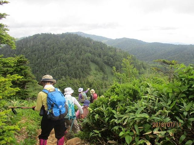 画像9: 【山旅会】志賀山と裏志賀山にいってまいりました!