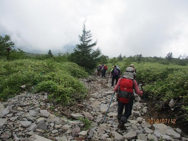 画像3: 【山旅会】根子岳にいってまいりました!(その2)