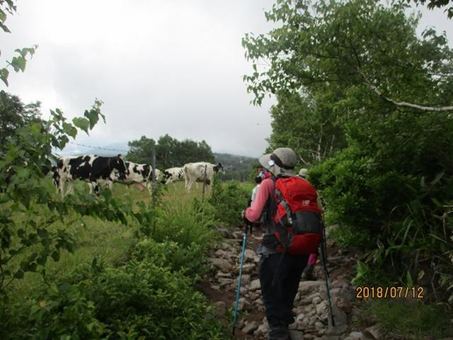 画像10: 【山旅会】根子岳にいってまいりました!(その2)