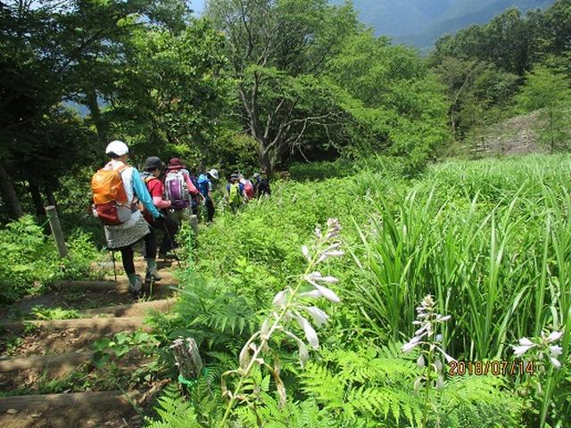 画像9: 【山旅会】陣馬山ツアーにいってまいりました!