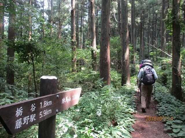 画像1: 【山旅会】陣馬山ツアーにいってまいりました!