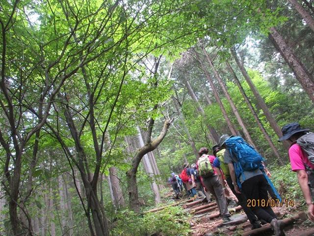 画像5: 【山旅会】陣馬山ツアーにいってまいりました!
