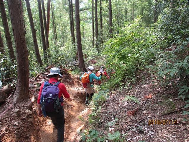 画像11: 【山旅会】陣馬山ツアーにいってまいりました!
