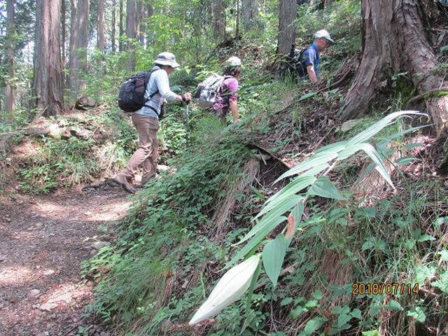 画像3: 【山旅会】陣馬山ツアーにいってまいりました!