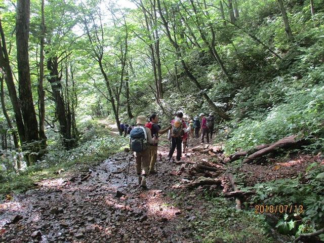 画像17: 【山旅会】三国山ツアーにいってまいりました!