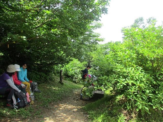 画像5: 【山旅会】三国山ツアーにいってまいりました!