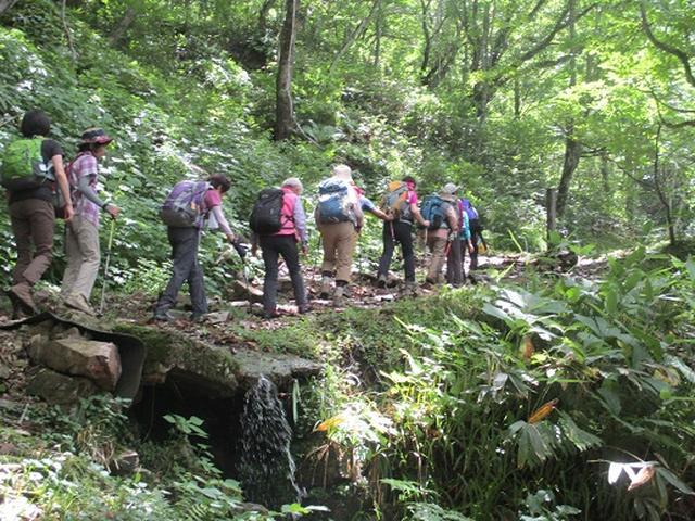 画像2: 【山旅会】三国山ツアーにいってまいりました!