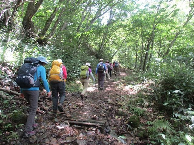 画像1: 【山旅会】三国山ツアーにいってまいりました!