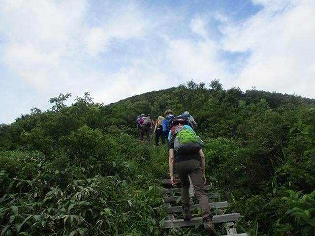 画像6: 【山旅会】三国山ツアーにいってまいりました!