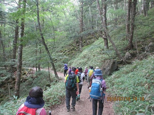 画像10: 【山旅会】大菩薩嶺ツアーにいってまいりました!