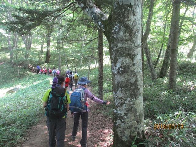 画像2: 【山旅会】大菩薩嶺ツアーにいってまいりました!