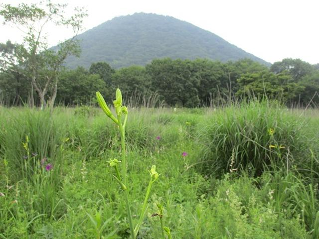画像11: 【山旅会】榛名山の下見にいってまいりました!