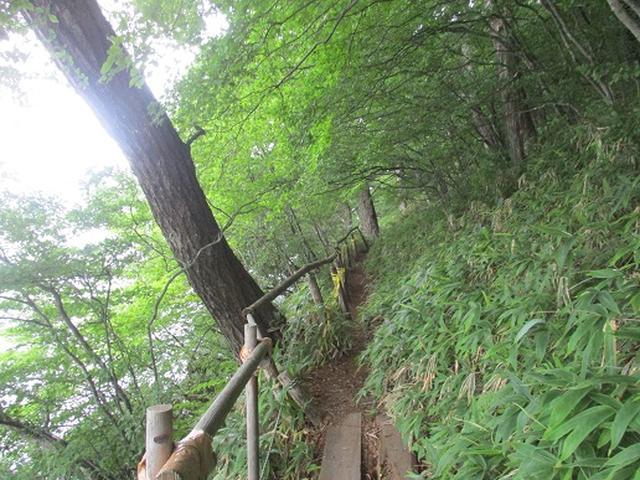 画像17: 【山旅会】榛名山の下見にいってまいりました!