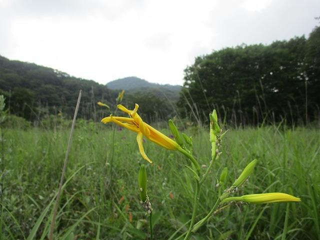 画像12: 【山旅会】榛名山の下見にいってまいりました!