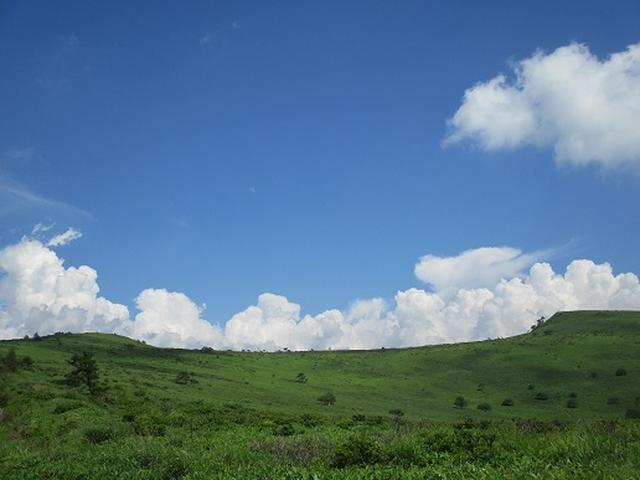 画像8: 【山旅会】霧ヶ峰・男女倉山ツアーにいってまいりました!
