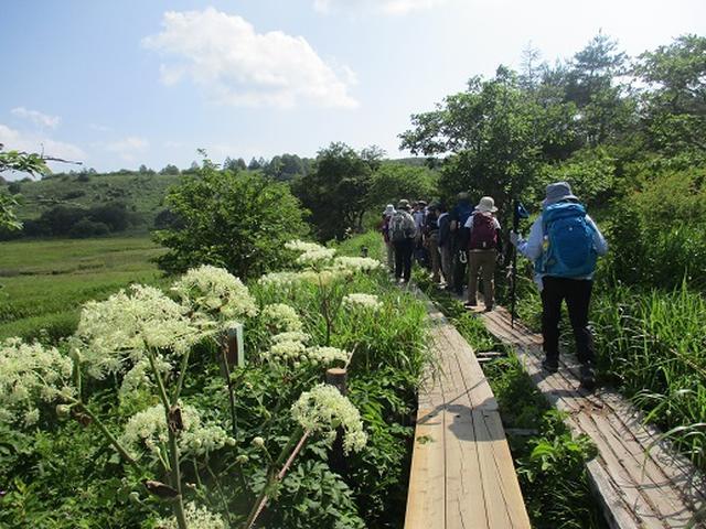 画像14: 【山旅会】霧ヶ峰・男女倉山ツアーにいってまいりました!