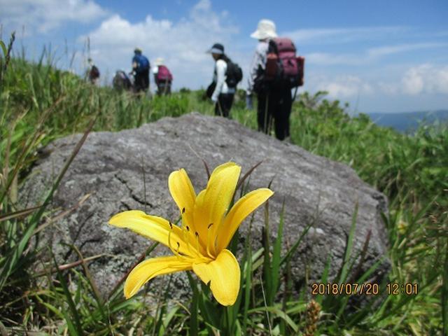 画像4: 【山旅会】霧ヶ峰・男女倉山ツアーにいってまいりました!