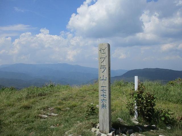 画像11: 【山旅会】霧ヶ峰・男女倉山ツアーにいってまいりました!