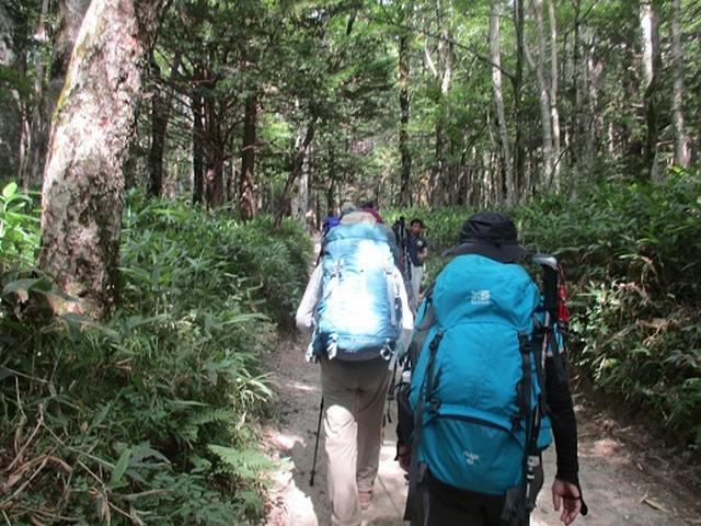 画像1: 【山旅会】蝶ヶ岳ツアーにいってまいりました!(その1)