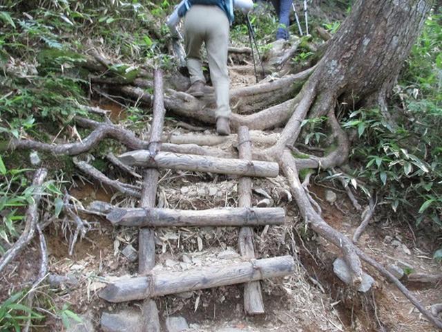 画像2: 【山旅会】蝶ヶ岳ツアーにいってまいりました!(その2)