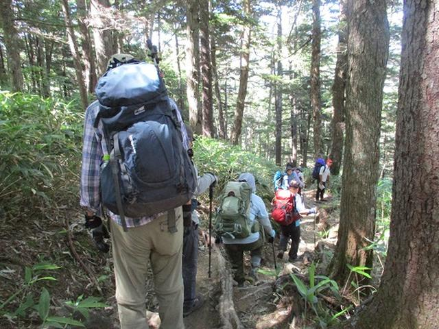 画像10: 【山旅会】蝶ヶ岳ツアーにいってまいりました!(その3)