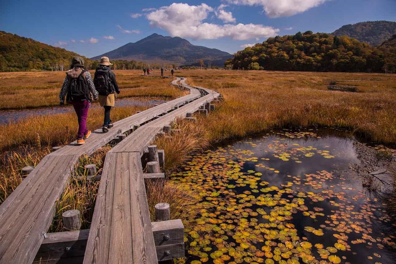 画像2: この秋スタート!ウォーキング・登山シリーズ・ハイキング説明会