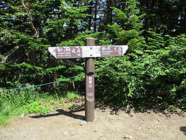 画像11: 【山旅会】蝶ヶ岳ツアーにいってまいりました!(その2)