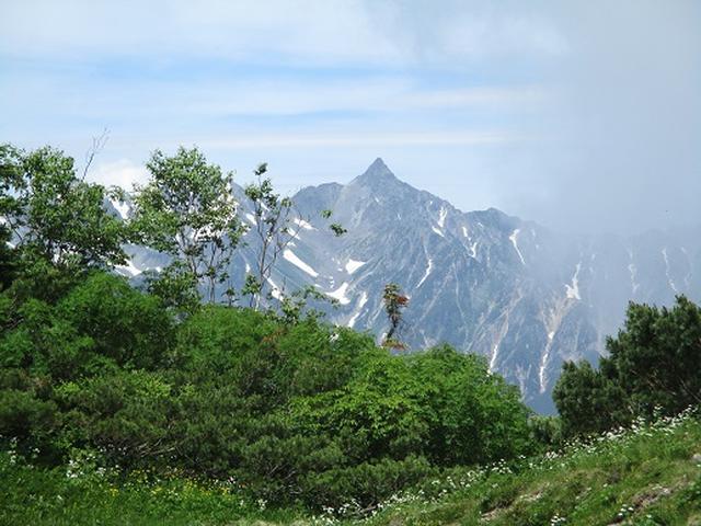 画像1: 【山旅会】蝶ヶ岳ツアーにいってまいりました!(その3)