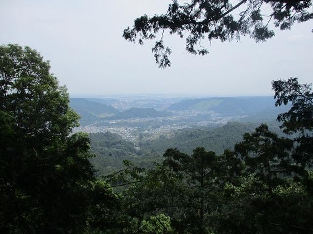 画像10: 【山旅会】日の出山から吉野梅郷