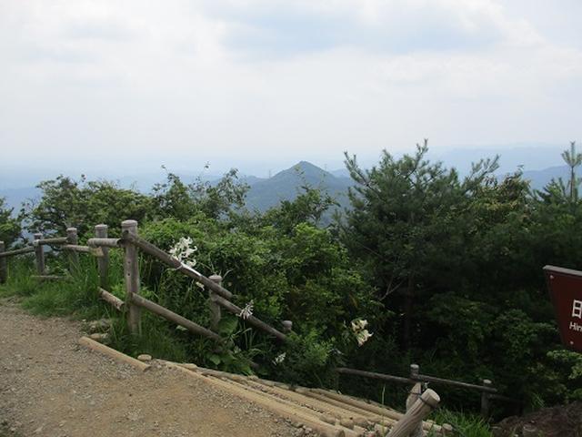 画像8: 【山旅会】日の出山から吉野梅郷
