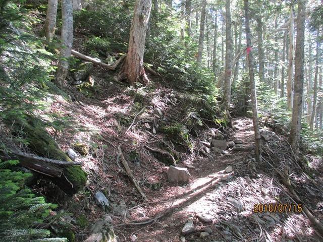 画像2: 【山旅会】甲斐駒ヶ岳の下見にいってまいりました!