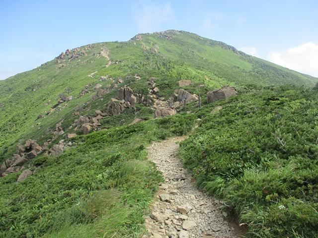 画像6: 【山旅会】至仏山の下見にいってまいりました!