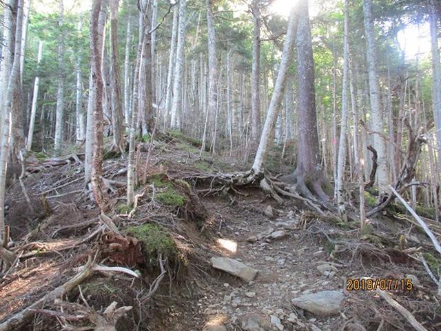 画像1: 【山旅会】甲斐駒ヶ岳の下見にいってまいりました!
