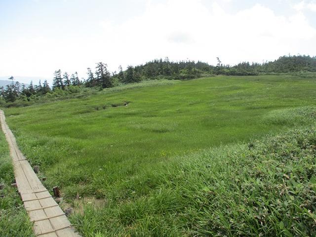 画像2: 【山旅会】至仏山の下見にいってまいりました!