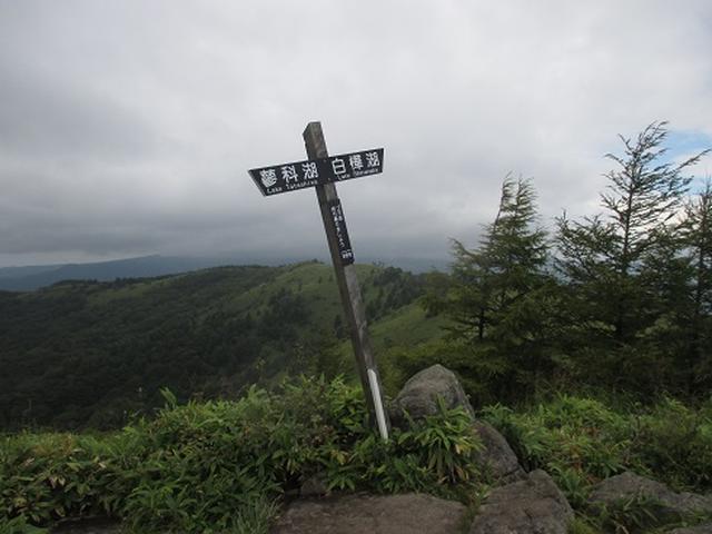 画像10: 【山旅会・登山ガイドこだわりツアー】初秋の花咲く八子ヶ峰ツアーのご案内
