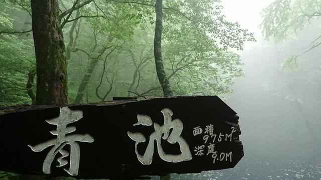 画像1: 【山旅会】白神山地にいってまいりました!