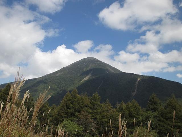 画像1: 【山旅会・登山ガイドこだわりツアー】初秋の花咲く八子ヶ峰ツアーのご案内