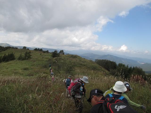 画像3: 【山旅会・登山ガイドこだわりツアー】初秋の花咲く八子ヶ峰ツアーのご案内