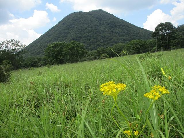 画像8: 【山旅会・登山ガイドこだわりツアー】添乗員からの便り・榛名ハイキングにいってまいりました!