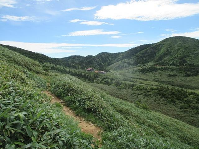 画像12: 【山旅会・登山ガイドこだわりツアー】岡田ガイドからの便り・白山ツアーにいってまいりました!(その1)