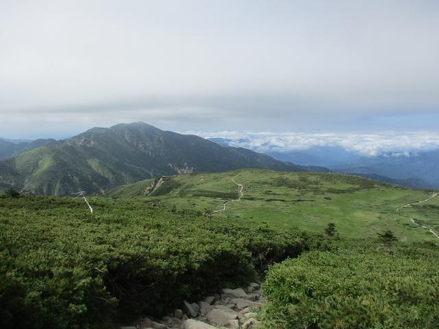 画像6: 【山旅会・登山ガイドこだわりツアー】岡田ガイドからの便り・白山ツアーにいってまいりました!(その2)