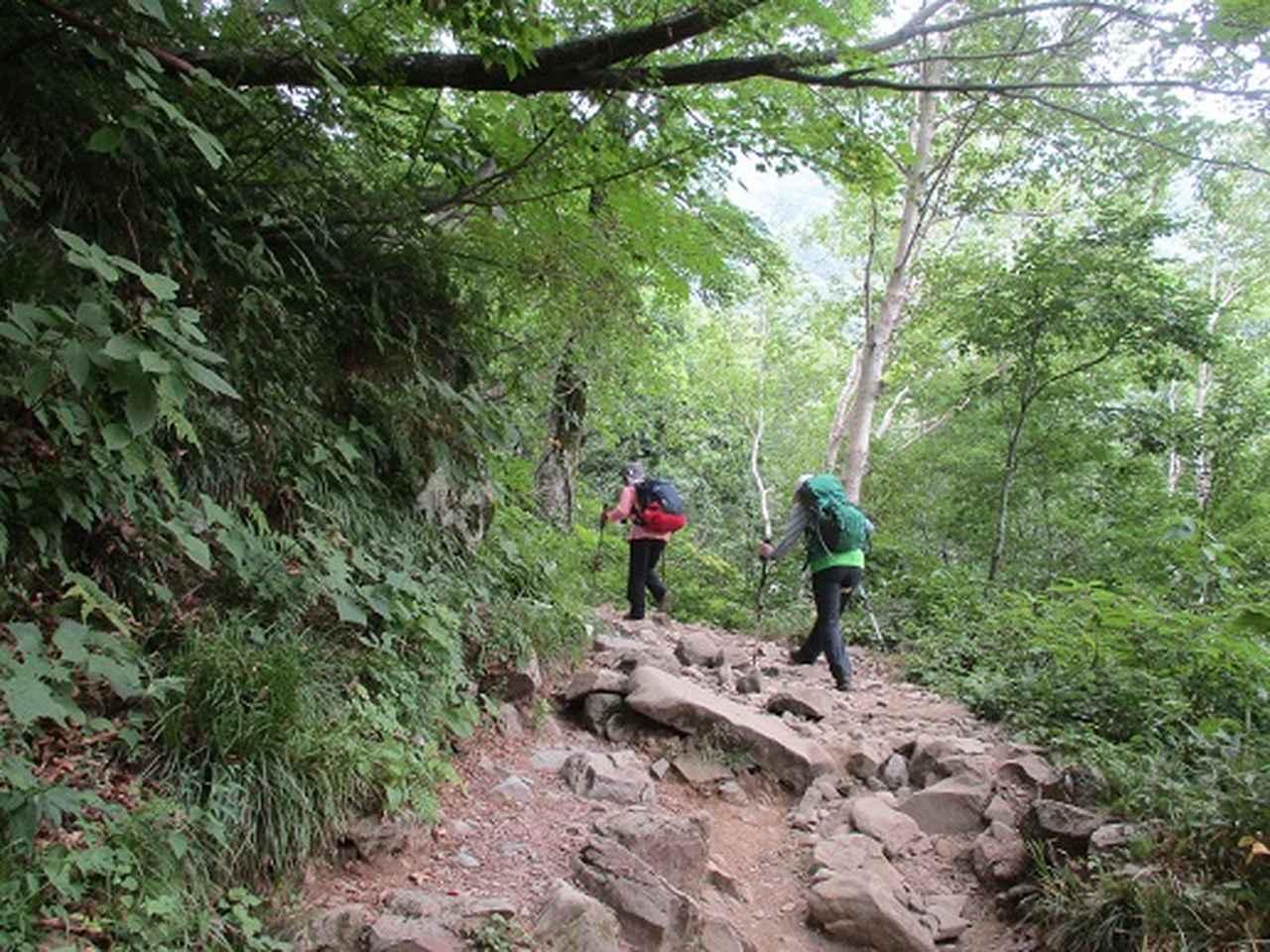 画像5: 【山旅会・登山ガイドこだわりツアー】岡田ガイドからの便り・白山ツアーにいってまいりました!(その1)
