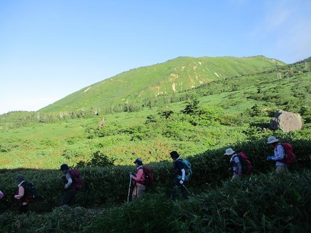 画像1: 【山旅会・登山ガイドこだわりツアー】岡田ガイドからの便り・白山ツアーにいってまいりました!(その2)